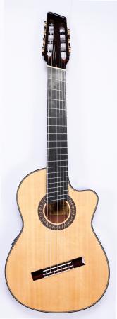 Agile Renaissance Classical 72527 RN EQ CUT NA (Nylon String) Advanced Order 9/17