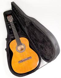 Attitude DGC-100 Dreadnought Guitar Case