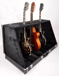 Douglas GSC-220/6 Upright Guitar Case