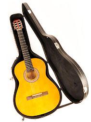 Douglas CGC-200 Classical Guitar Case