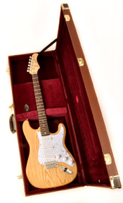 Douglas EGC-300 ST BRN Case